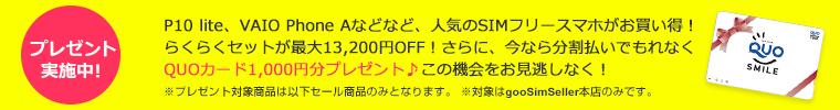 img_2017ninkitanmatsu_quo